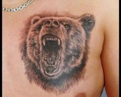 Grizzly Bear Tribal Tattoos