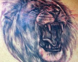 Lion Head Tattoo Designs