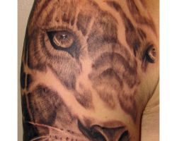 Lioness Tattoos For Women