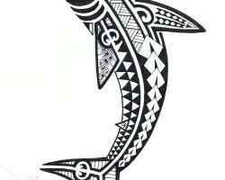 Tribal Shark Tattoo Pictures
