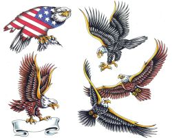 Bald Eagle Tattoos Designs