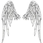 Images Of Angel Wings Tattoos