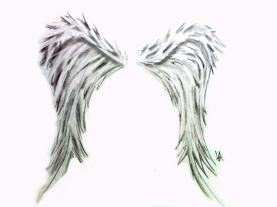 Pictures Of Angel Wing Tattoos
