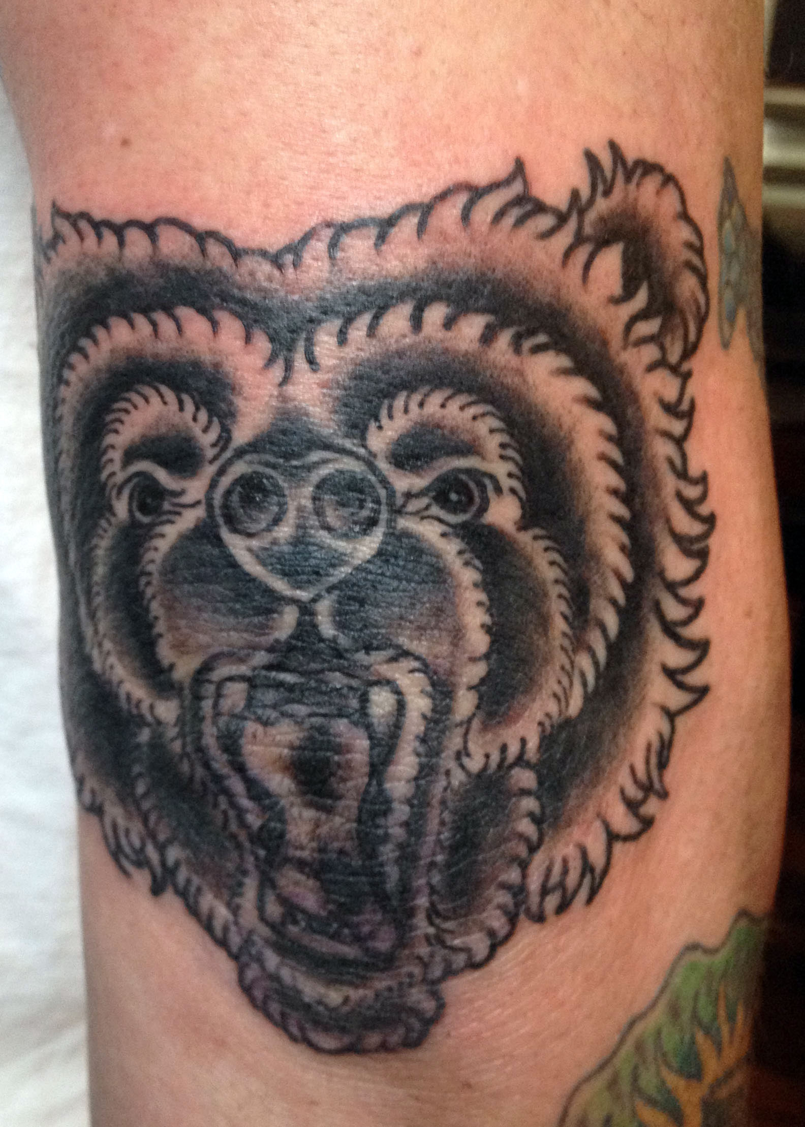 Black Bear Tattoo Designs