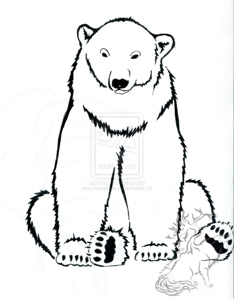 Polar Bear Tattoo Designs