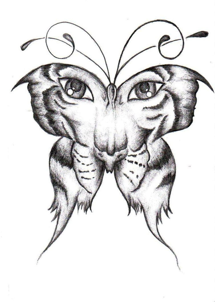 Butterfly Tattoos Images Free