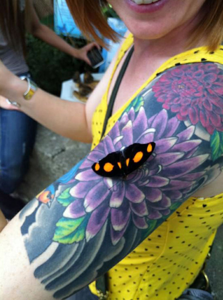 Ladies Butterfly Tattoo Designs