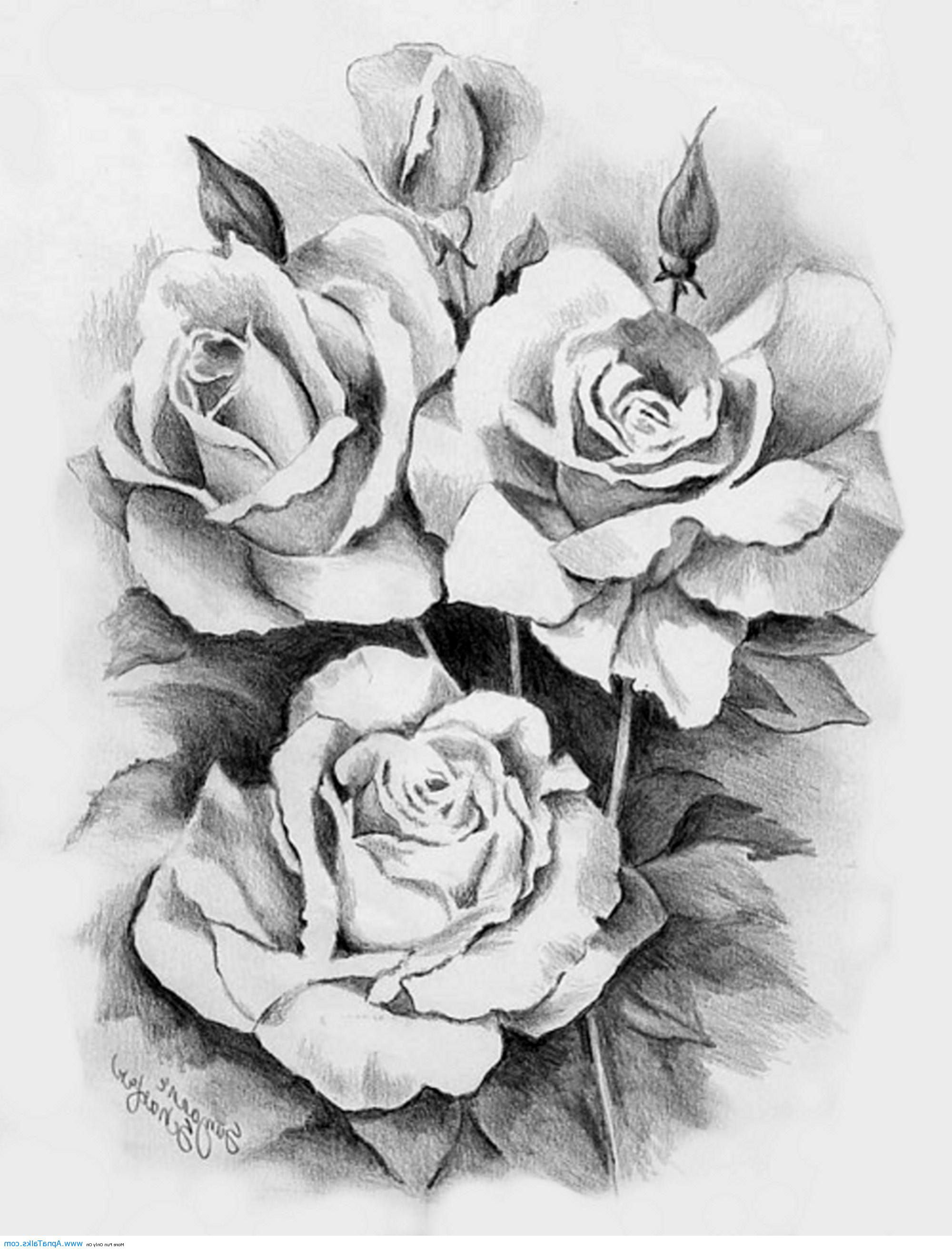 Heart and rose tattoo designs cool tattoos bonbaden for Rose tattoo patterns