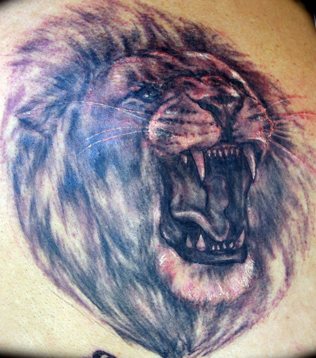 Lion head tattoo designs cool tattoos bonbaden for Lion head tattoo