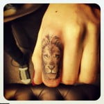 Lion Tattoos Men Arm