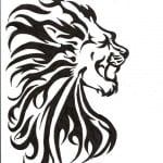 Lions Tattoos Designs