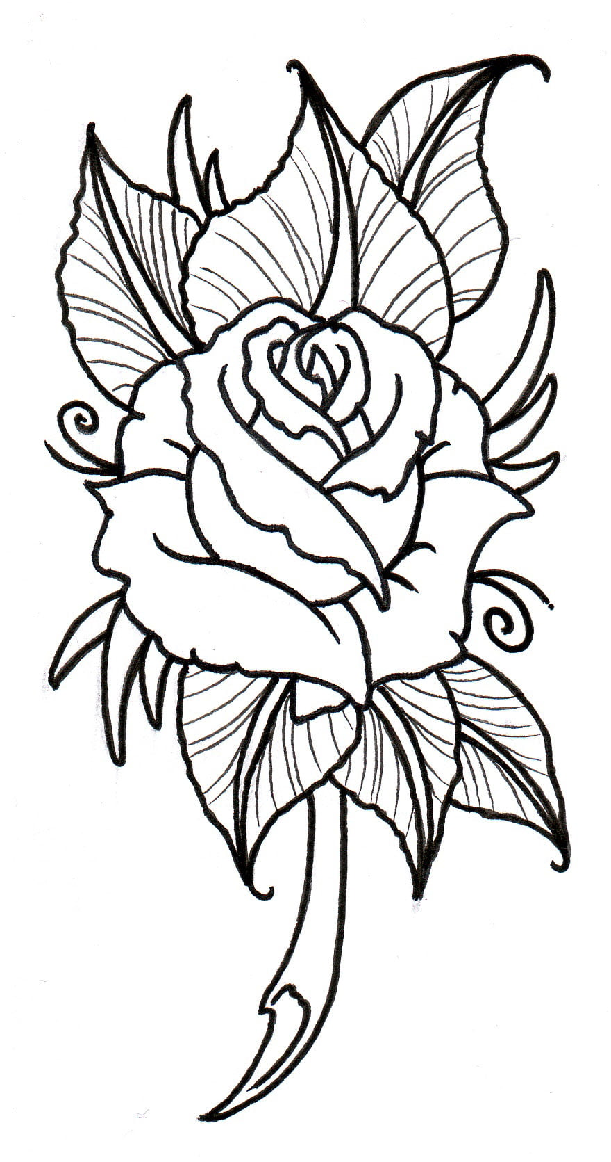 Free rose tattoos designs cool tattoos bonbaden for Rose tattoo patterns
