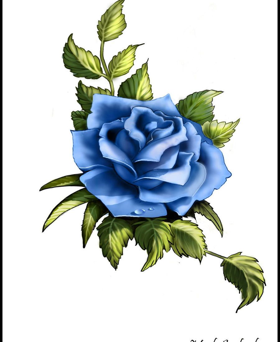 Pictures Of Rose Tattoos Designs