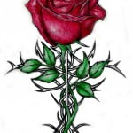Tattoo Roses Pictures