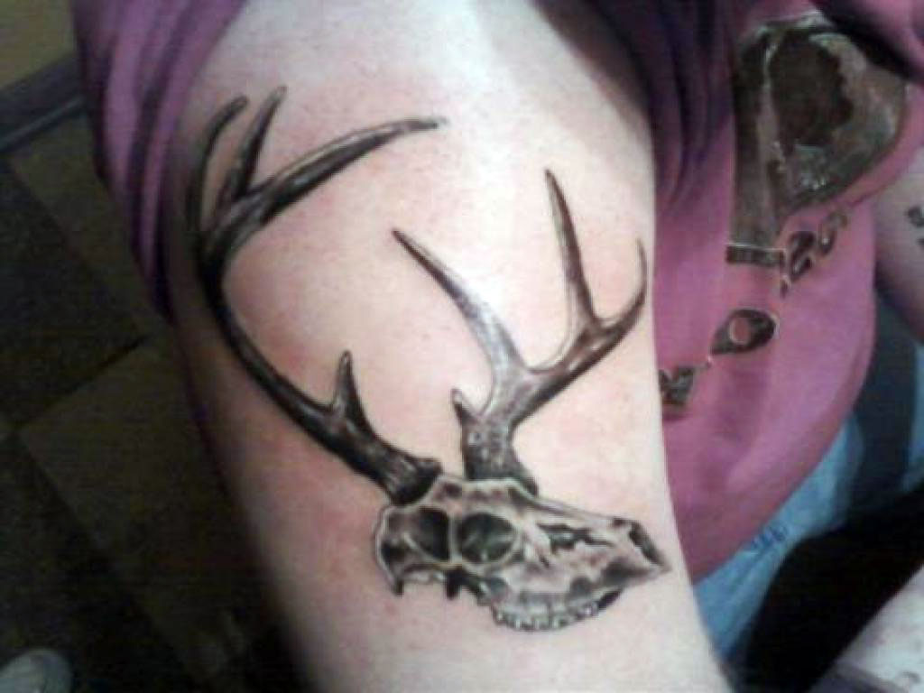 Tattoos Of Deer Skulls
