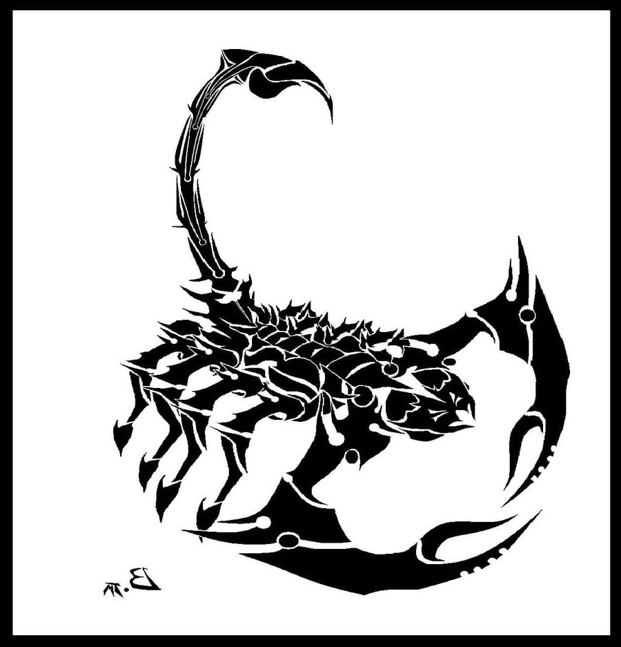 Tribal-Tattoos tribal-scorpion-tattoo-designs-for-men