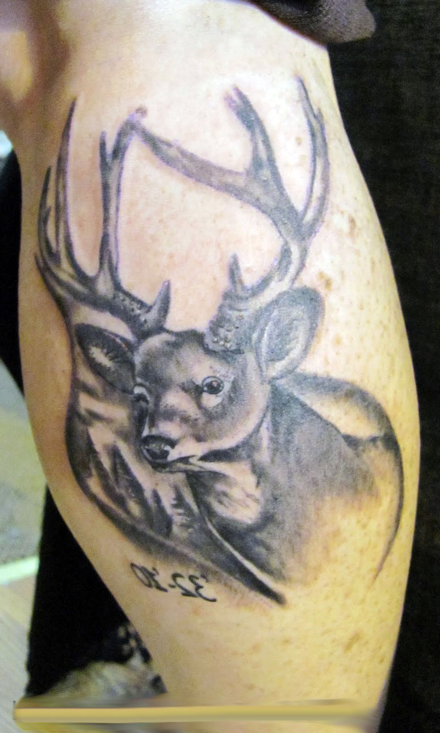 Deer Head Tattoos Designs