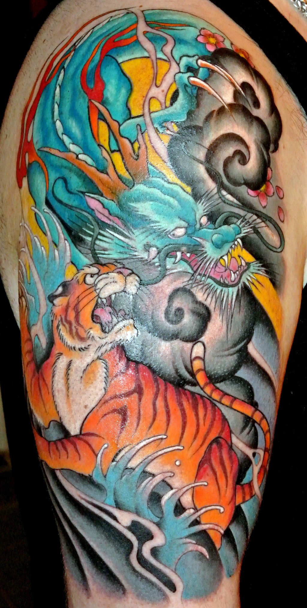 Dragon And Tiger Pictures