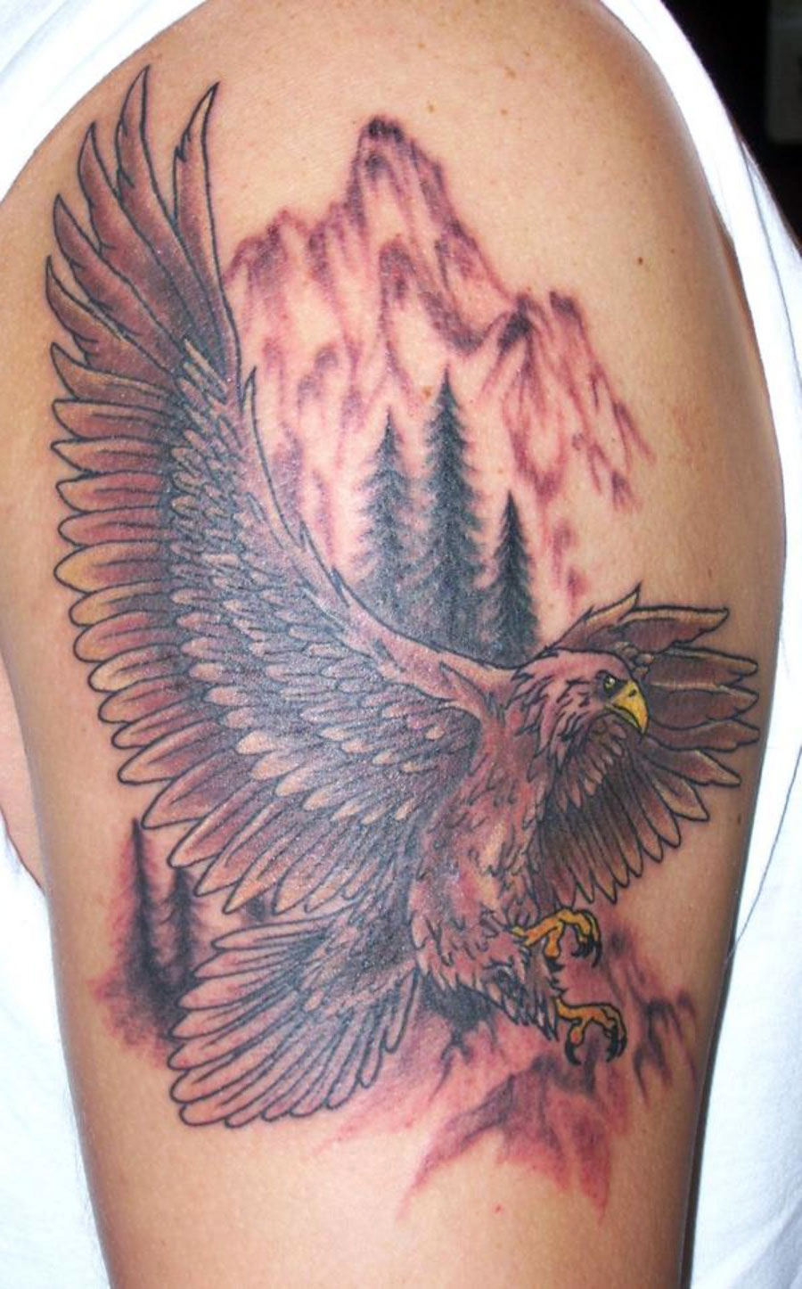 Eagle Tattoos On Arm