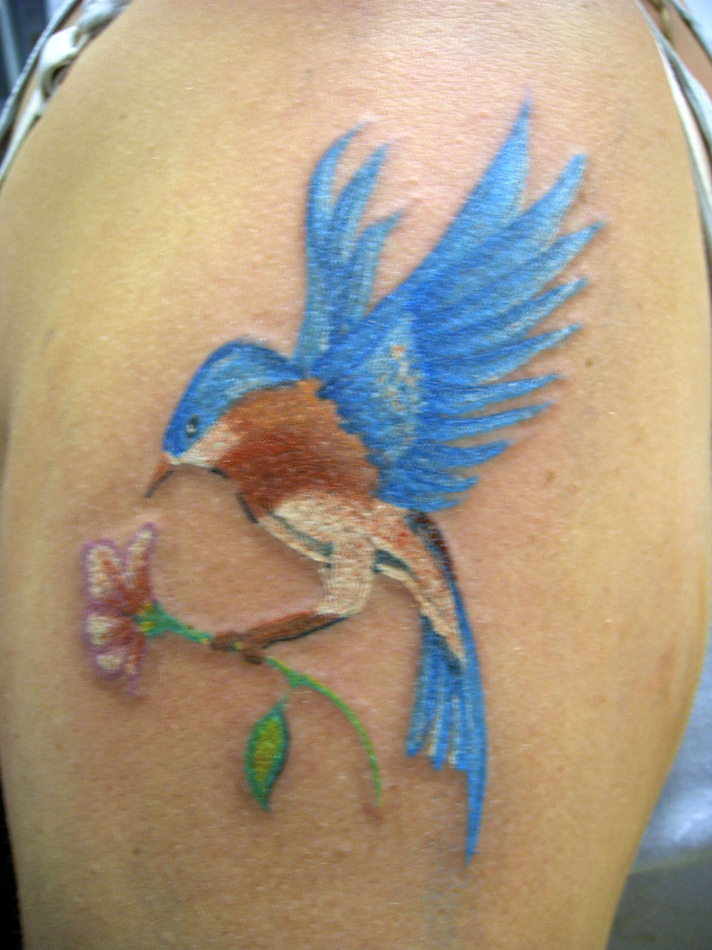 Free Hummingbird Tattoos Designs