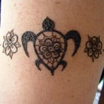 Turtle Tattoos Designs